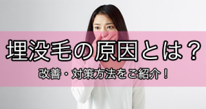 maibotsumou_top